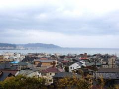 又是一年樱花祭 漫步日本伊豆/镰仓之旅